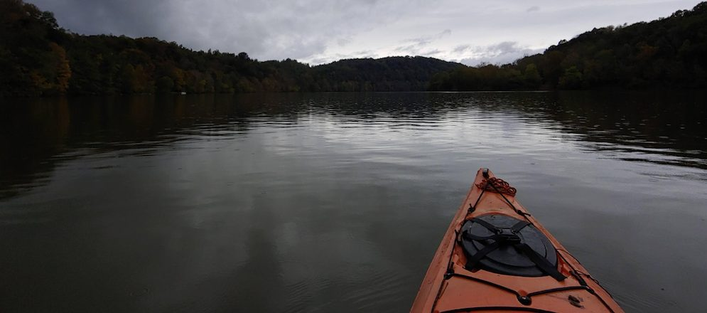Researcher embarks on kayaking trip to assess invasive crayfish species
