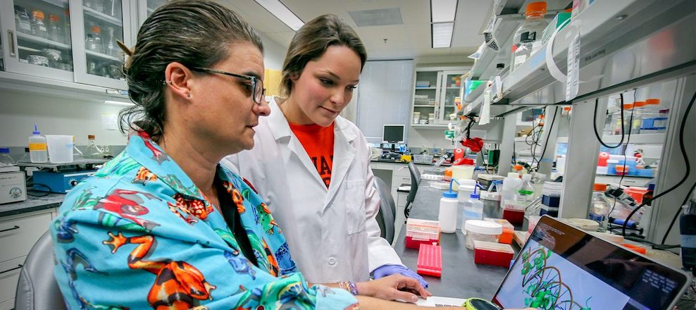 Students continue work begun in the Genomics Sequencing Center summer program